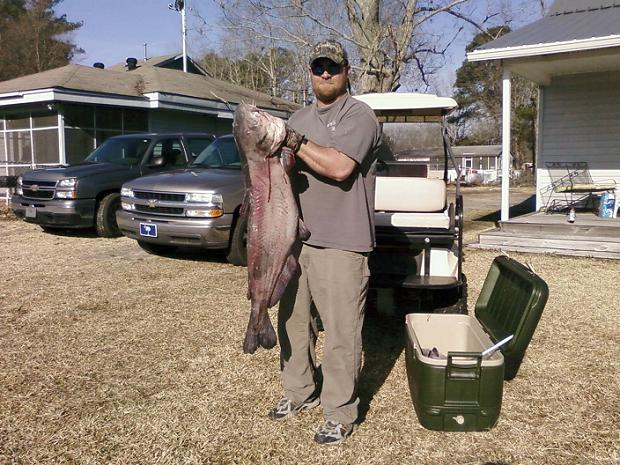 Kevin Griffith 45LB BLUE CATFISH CAUGHT 3/6/10 LAKE MARION